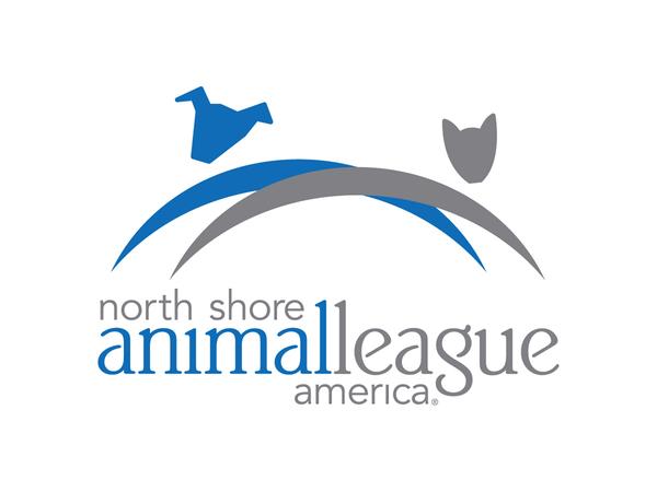 NSALA new logo